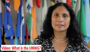 Video: what's the UNWG